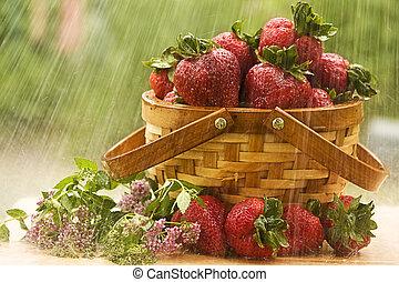 fraises, pluie