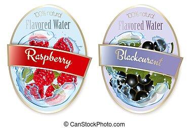 framboos, besjes, fruit, set, black , etiketten, flavored, water., curant., vector.