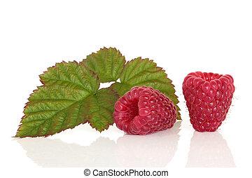 framboos, fruit