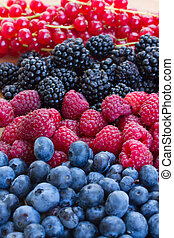 frambuesa, currrunt, mora, bluberry, rojo