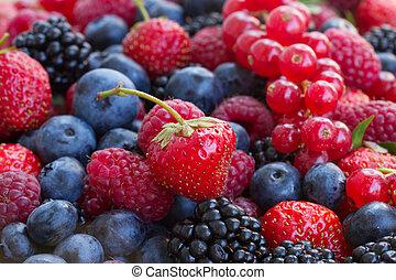 frambuesa, rojo, mora, bluberry, currrant