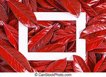 Frame against the background of red leaves.