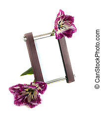 Frame and tulips on a white background