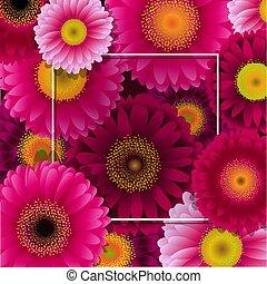 frame, bloemen, grens