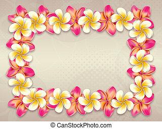 frame, bloemen, plumeria