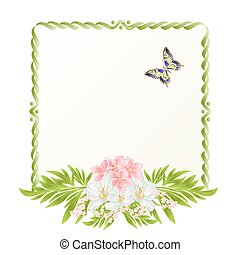 Frame cherry blossom and jasmine with butterflies vintage festive background vector