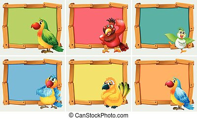 Frame design with parrots