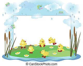Frame, ducklings