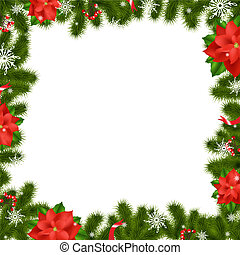 Frame Fir Tree Branches With Poinse