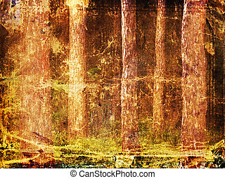 frame forest