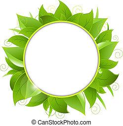Frame From Green Leaves