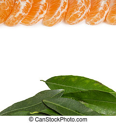frame from tangerine slices and leaves