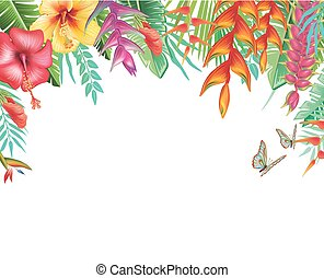 Frame from tropical and flowers