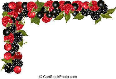 frame, gemaakt, van, fris, sappig, berries., vector.