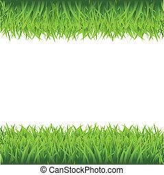 frame, gras, groene