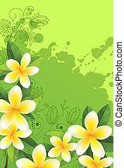 frame, groene, fris, witte bloemen, bladeren