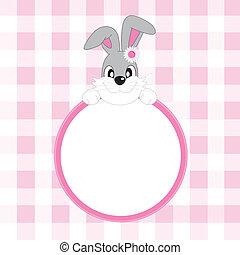 frame, konijn