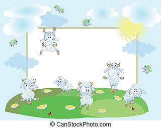 frame, konijnen