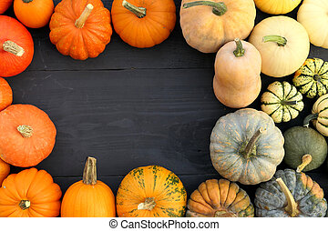 Frame made of colorful pumpkins and squashes