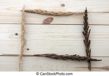 Frame made of different wheats isolated on wood floors