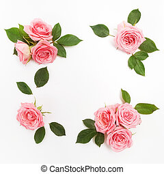 Frame made of pink roses, green leaves, branches, floral pattern on white background. Flat lay, top view.