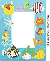 frame, met, tropische vissen