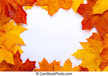 frame mockup orange red autumn leaves on a white background top view