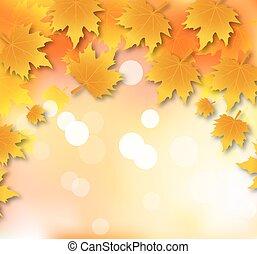 Frame of autumn leaves falling