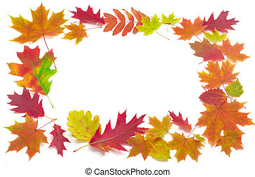Frame of autumn leaves on a light background