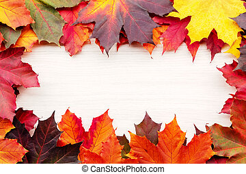 Frame of autumn maple leaves isolated on white background