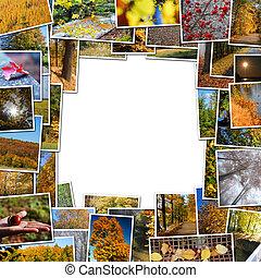 frame of autumn photos
