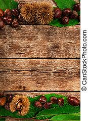 Frame of chestnuts, leaves and chestnut bur. - Frame of...
