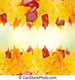 frame of fall leaves