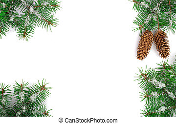 Frame of Fir tree branch with snow and cone isolated on...