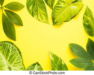 Frame of fresh green leaves on a yellow background. Copy space