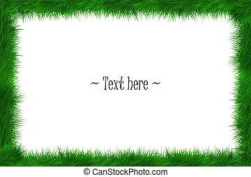Frame of grass on white background