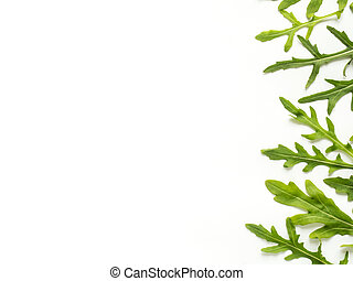 Frame of green arugula leaves on white background Copy space