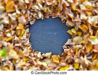 frame of leaves