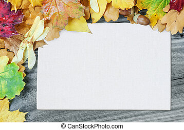 Frame of multicolored autumn leaves