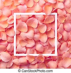 Frame of pink rose petals