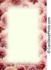 Frame of pink roses