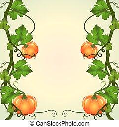 frame of pumpkins