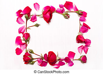 frame of red flowers on white background