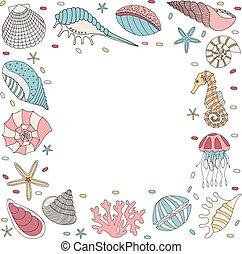 Frame of seashell