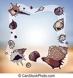 Frame of seashells.