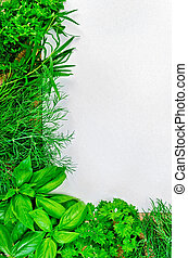 Frame of green parsley, basil, tarragon and dill, white paper on sackcloth