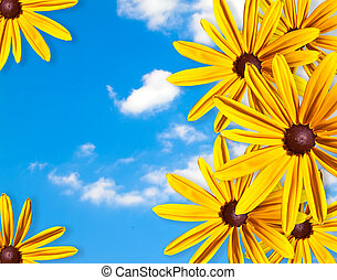 Frame of yellow flowers against the blue sky