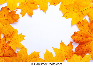 frame of yellow-orange autumn maple leaves