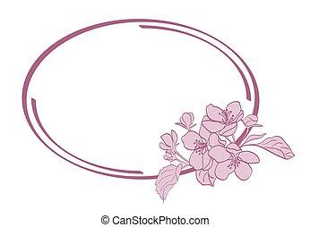 frame oval, com, apple-tree, flores, -, vetorial