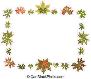 Frame put from autumn sheet